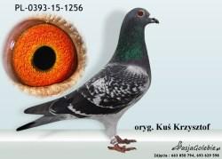 RODOWOD-PL-0393-15-1256
