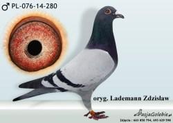 RODOWOD-PL-076-14-280