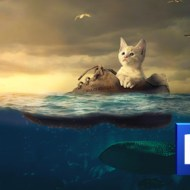 Photoshop チュートリアル / 漂流するネコ