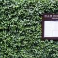 Passagem Gastronômica - Bar Boulud - Londres