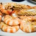 Passagem Gastronômica - Restaurante Casa Lucio - Madrid - Espanha