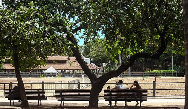 Parque da Água Branca, opção de lazer mais tranquila