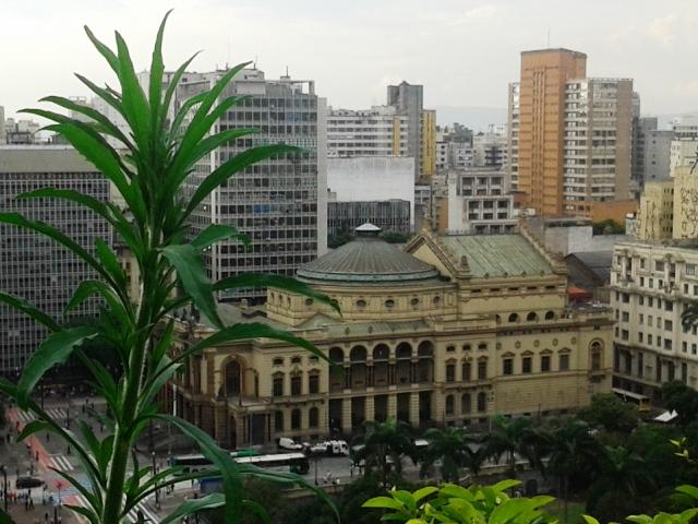 Vista do mirante Foto: Patrícia Ribeiro/Passeios Baratos em SP