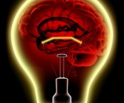 BRAIN-THE-MOST-ENERGY-CONSUMING-PART-300x300