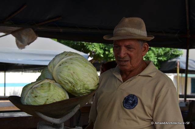 Cabbage is a major staple of the Cuban diet
