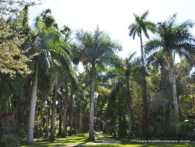 The Royal Palm Grove, planted in 2012. The Royal Palm is native to Florida and can grow to a height of 100 feet.