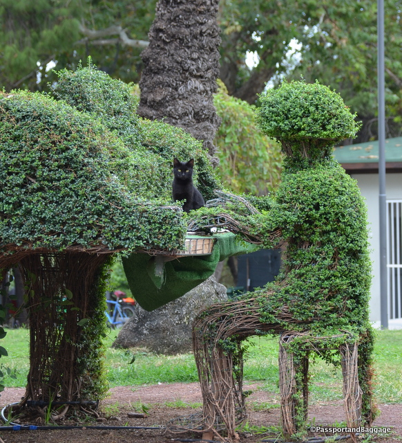 Cats are everywhere, even hidden in the topiary