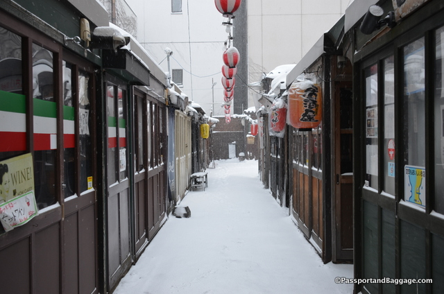 Small sushi restaurants can be found hidden off a side alley from one of the covered malls.