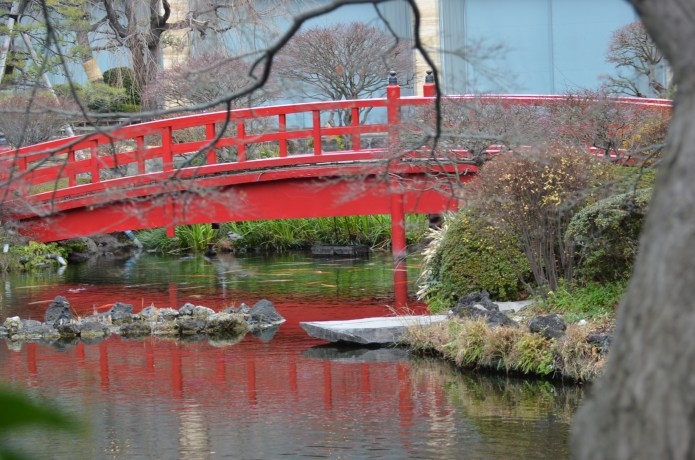 Japanese Bridge in a Japanese Garden