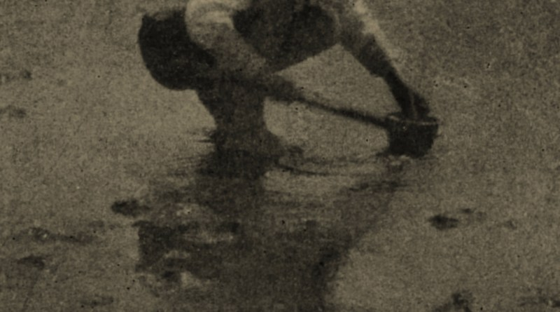 Hurry and Leisure by D. Mahony about 1908