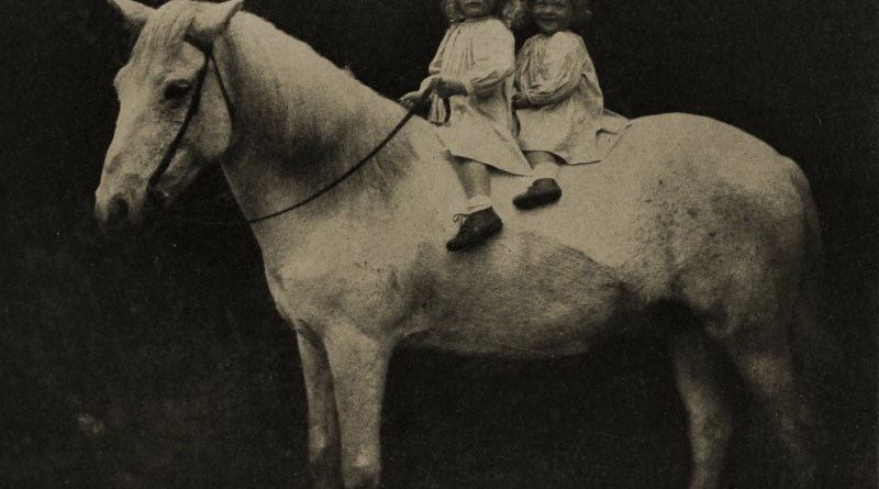 Riding a horse by E. P. Cabot about 1908