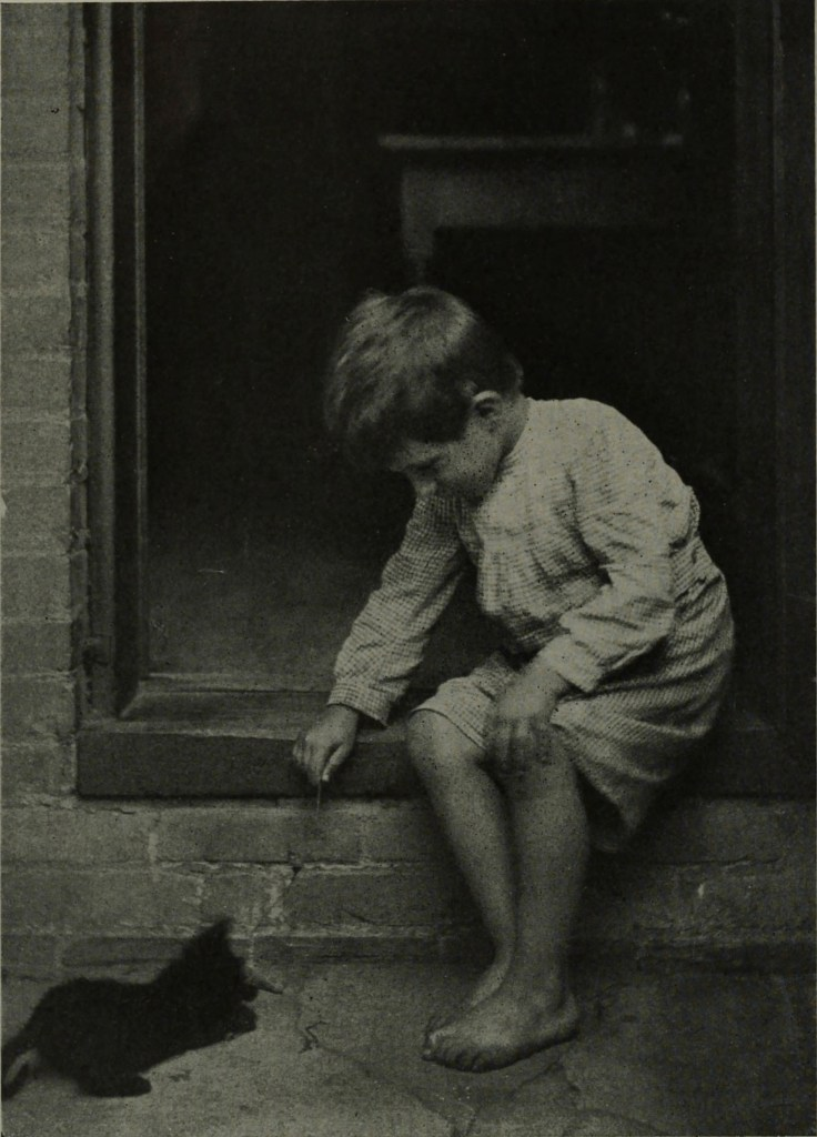 Making friends by A. B. Hargett about 1908