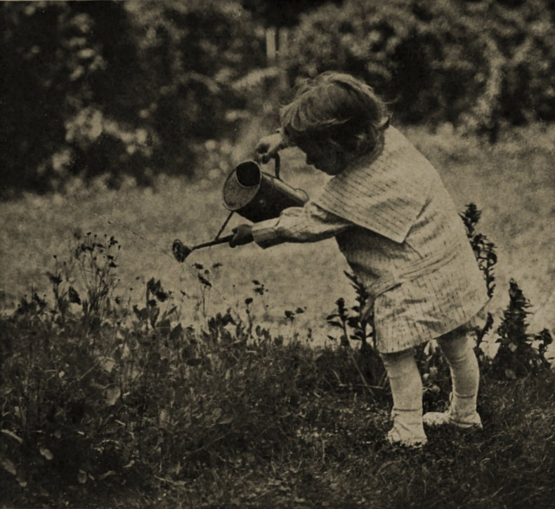 Watering by Jere Montague about 1908