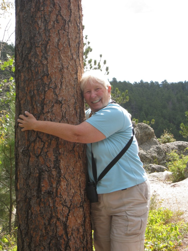 Not Ashamed to be a Tree Hugger (2/2)