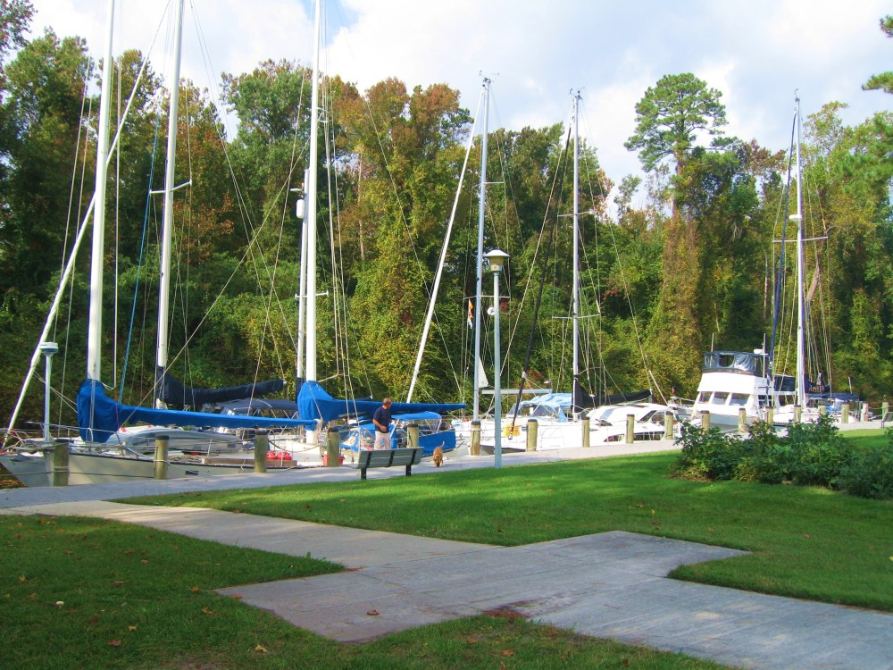 Dismal Swamp: Depends on One's Point of View  (2/3)