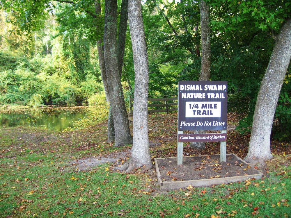 Dismal Swamp: Depends on One's Point of View  (3/3)