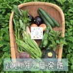 202107月旬彩野菜バスケット