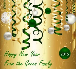 new year green 2015 24826889_m