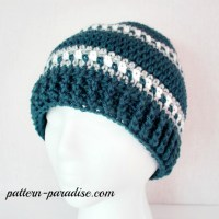 Free Crochet Pattern – Snowy Day Hat