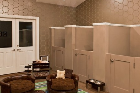 dog bedroom. dog bedroom ideas Emejing Dog Room Design Ideas Gallery  Decorating Interior