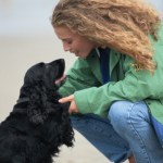 pawsintraining-about-us