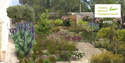 jardin sec mediterranéen apres