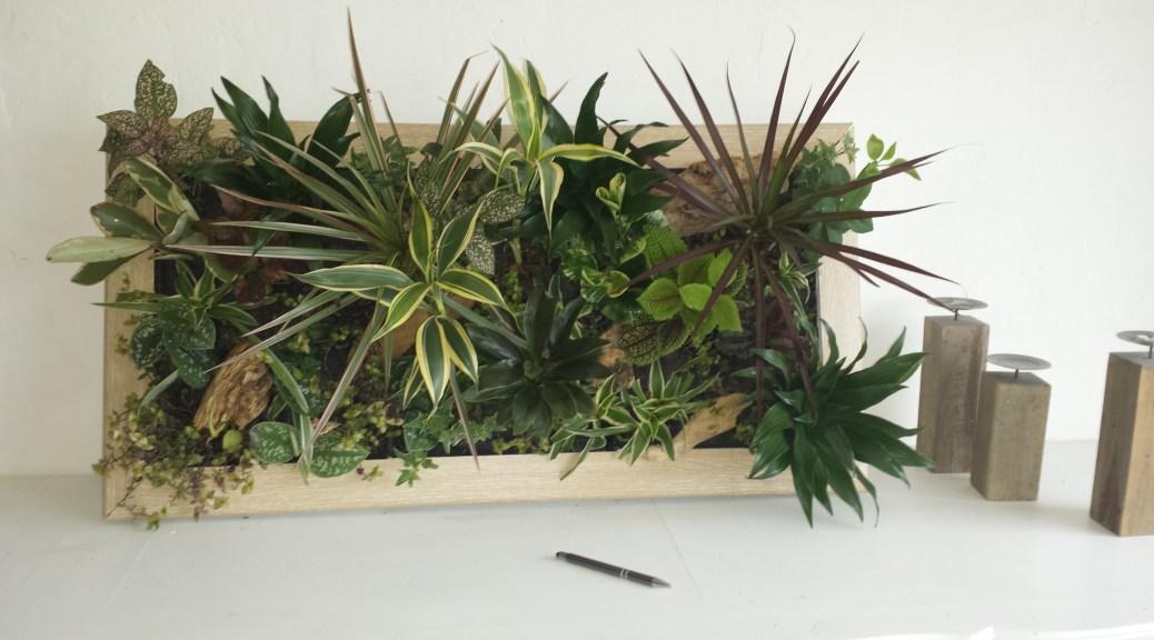 Cadre v g tal sur mesure fr d ric morisset votre for Cadre mural plantes