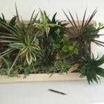 cadre végétal sur mesure