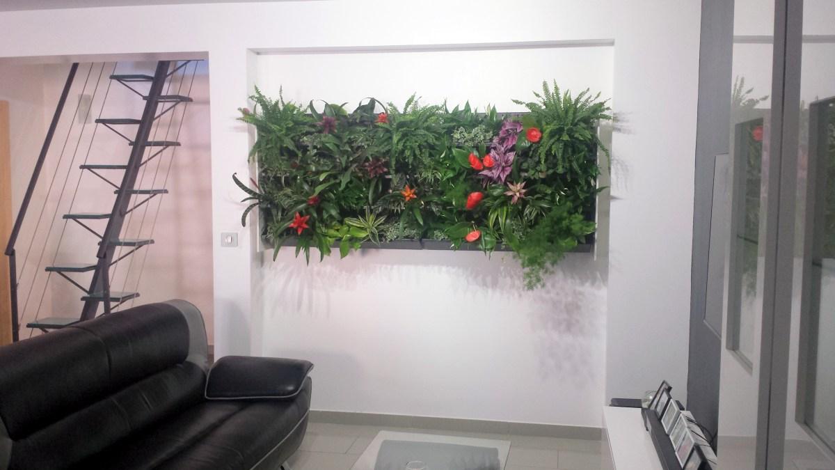 mur v g tal int rieur fr d ric morisset votre paysagiste conseil. Black Bedroom Furniture Sets. Home Design Ideas