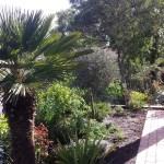 Créer un jardin pour papillons