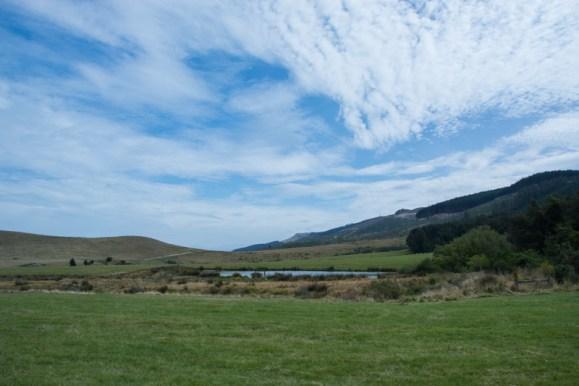 Bienvenue chez Ben Richards, éleveur de moutons et de bovins viande sur l'île Sud de la Nouvelle-Zélande ! - http://paysansdavenir.com/portrait-dagriculteur-ben-richards-8040-moutons/