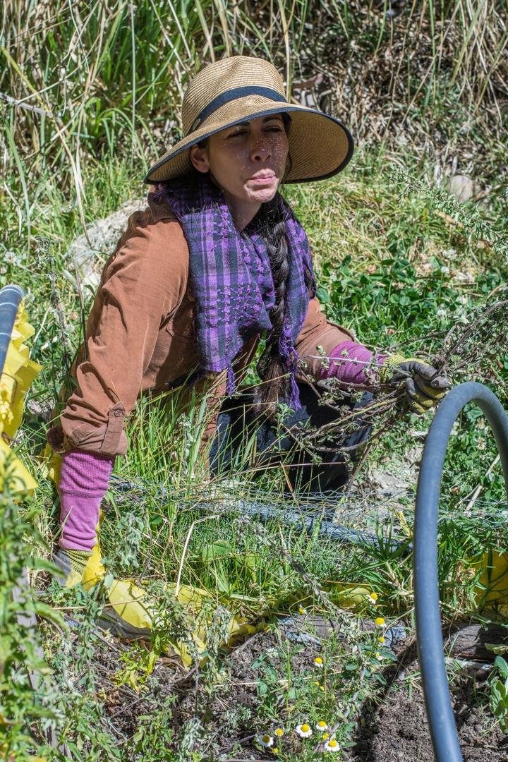 Jardin maraîcher à La Paz - Maria-Theresa l'instigatrice du projet à La Paz