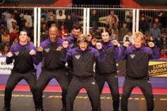 Image result for globo gym purple cobras