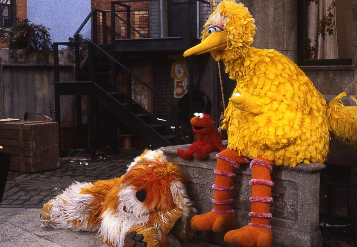 Fullsize Of Barkley Sesame Street