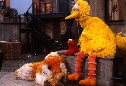 Small Of Barkley Sesame Street