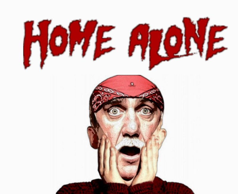 Large Of Movies Like Home Alone