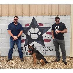 Small Crop Of Warrior Dog Foundation