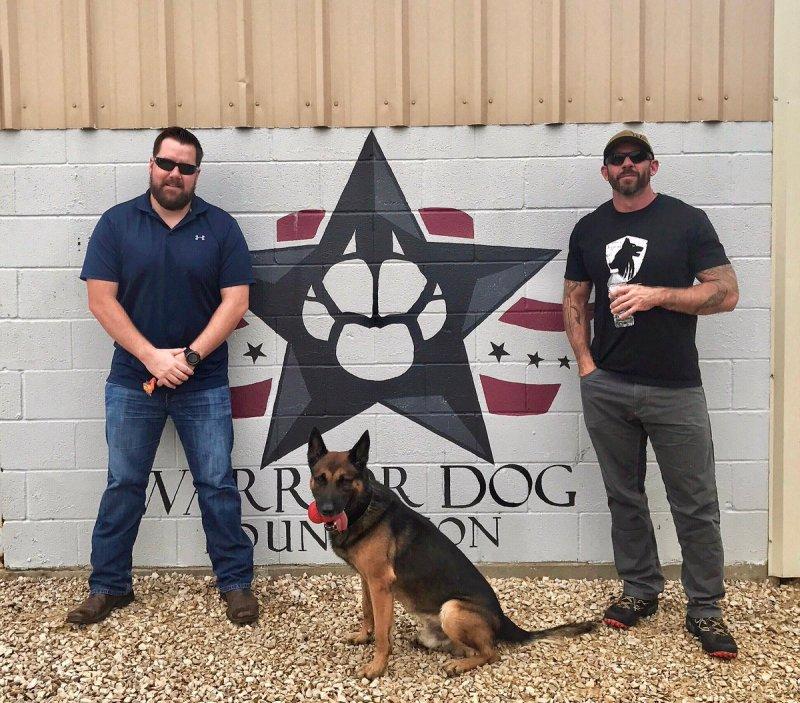 Large Of Warrior Dog Foundation