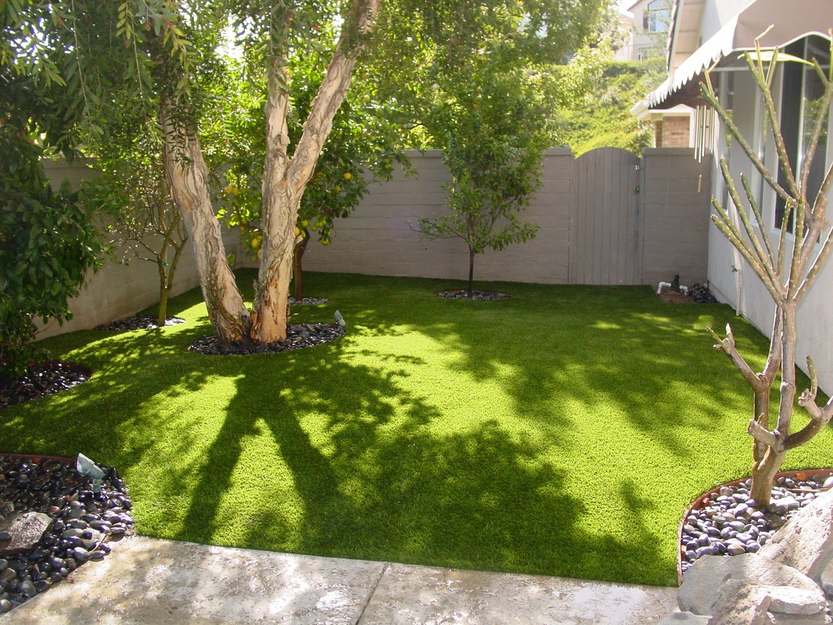 Top Replies Retweets Like Sgw Twitter Syntic Grass Warehouse Irving Syntic Grass Warehouse Anaheim Ca 92806 houzz-03 Synthetic Grass Warehouse