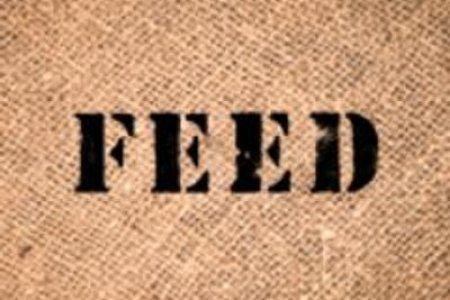 feed projects (@feedprojects) | twitter