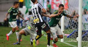 Leandro Pereira sai para comemorar o gol do Palmeiras (FOTO: Ivan Storti)