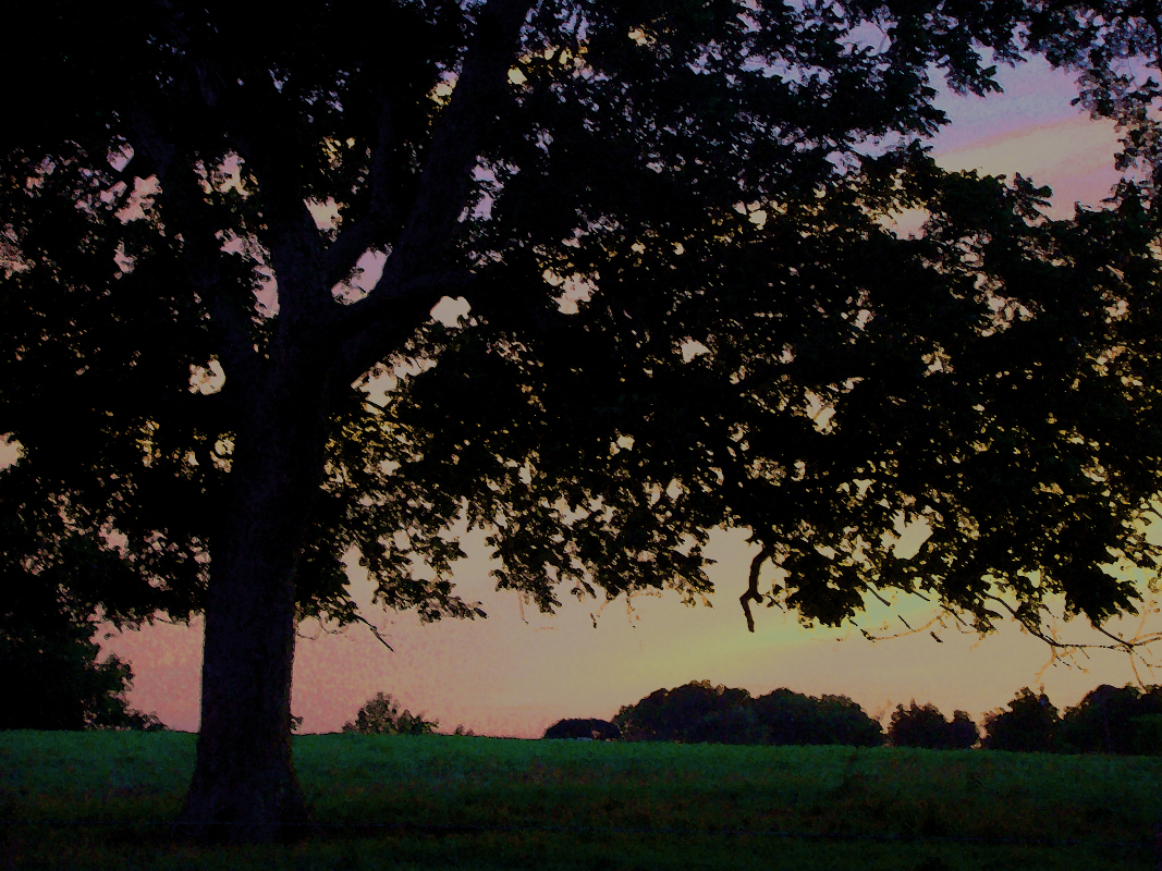 Sunset Miller's Field by Christopher Woods