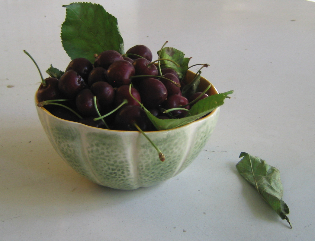 A Bowl of Cherries by Karen Greenbaum-Maya