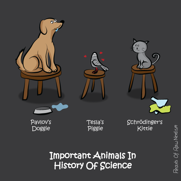 animals in science