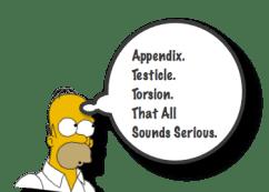 Testis Appendix Torsion