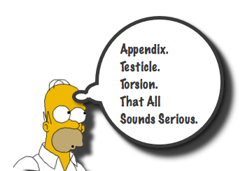 Appendix Testis Torsion