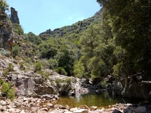 Letto del Riu Cannisoni