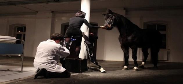 www.pegasebuzz.com   Que le cheval vive en moi