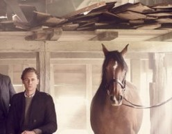 jason-bell-vanity-fair-war-horse-header