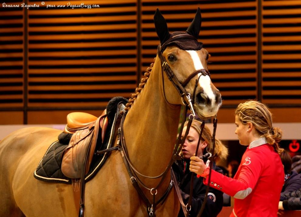 Salon du cheval gucci paris masters grand prix equidia for Salon du master